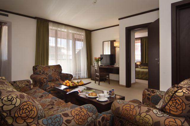 Astera Bansko Hotel & Spa - Appartement d`une chambre à coucher